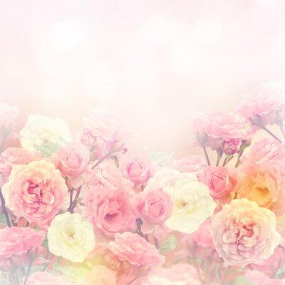 Obraz Róże tło