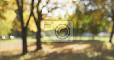 Obraz rozmyte tło z jesiennej park