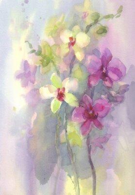 Obraz różowa biała orchidea oddział akwarela backgroung