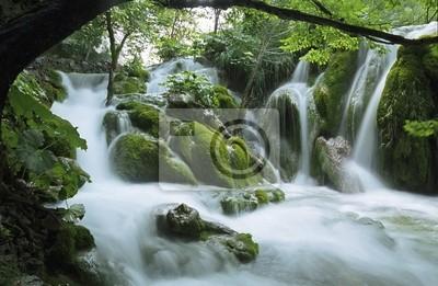 Obraz ruisseau en kaskady