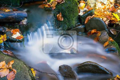 runnig mountain brook in autumn forest