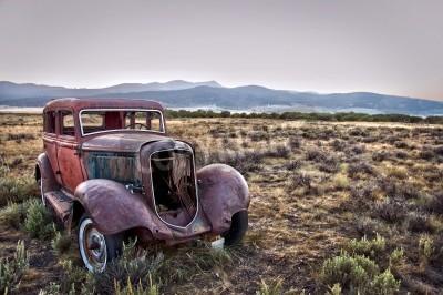 Obraz Rusty rozbitego samochodu, rezygnując z natury