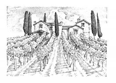 Obraz rustykalna winnica. wiejski krajobraz z domami. tło słonecznego Toskanii. pola i drzewa cyprysowe. zbiory i stogi siana. grawerowane ręcznie rysowane w starym szkicu i stylu vintage na etykiecie.