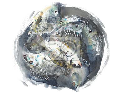 Ryby w akwareli wiadro ręcznie samodzielnie na białym tle