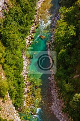 Rzeka Tara Kanion - Czarnogóra