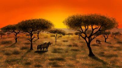 Obraz Savannah na zachodzie słońca
