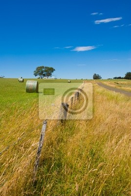 Scena obszarów wiejskich