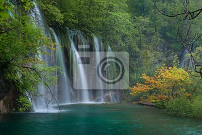 Scena z wodospadem i gałęzi klonu pomarańczowego