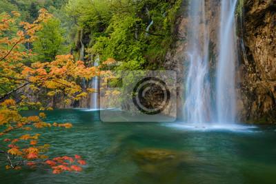 scena z wodospadem i pomarańczowy klon oddziału