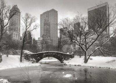 Obraz Scena Zima w Manhattanie: Staw, Most i Manhatta Gapstow