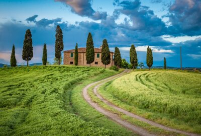 Obraz Scenic view of typical Tuscany landscape, Italy