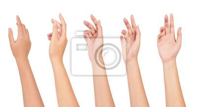 Obraz Set kobiety ręka odizolowywająca na białym tle.