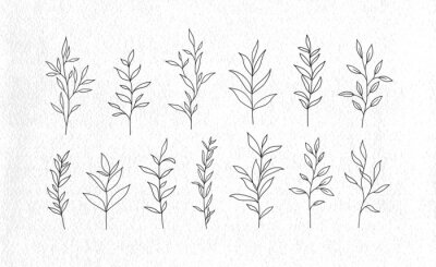 Obraz Set of vector tree branches and leaves. Hand drawn floral elements.