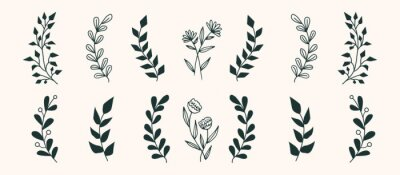 Obraz Set of vector vintage floral elements. Cute set of doodle frames and borders. Elements flowers, branches, swashes and flourishes