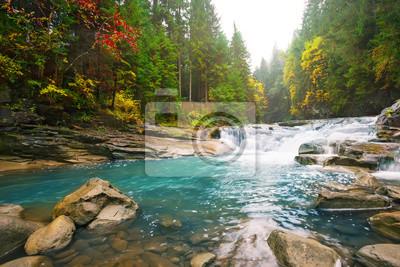 Obraz Siklawa na halnej rzece w lesie