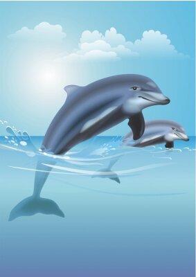 Obraz Skoki delfinów Ilustracja