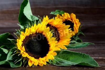 Obraz Słoneczniki na drewnie
