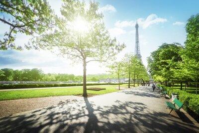 Obraz słoneczny poranek i Wieża Eiffla, Paryż, Francja