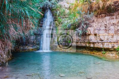 Spacer w parku narodowym Ein Gedi, Izrael