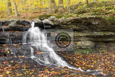 Spadek liści na Tailwater Falls - Owen County, Indiana