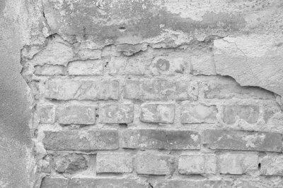 Obraz Stary mur jasny