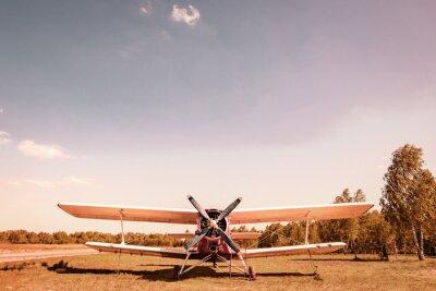Obraz Stary samolot. Dyplom.
