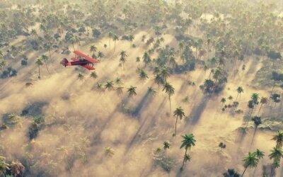 Obraz Stary samolot latający