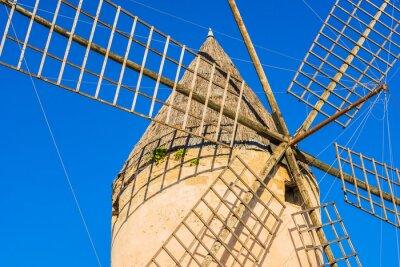 Obraz Stary wiatrak