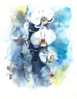 Obraz Storczyki tropikalne kwiaty akwarela ilustracji samodzielnie na białym tle kartkę z życzeniami