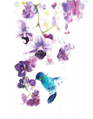 Obraz Storczyki tropikalnym kwiaty akwarela ilustracji ręcznie na białym tle kartkę z życzeniami