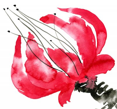 Obraz Streszczenie czerwony kwiat. Rysunek maku. Akwarela i atrament ilustracji w stylu sumi-e, U-sin. Oriental tradycyjnego malarstwa. Pojedynczo na białym tle.
