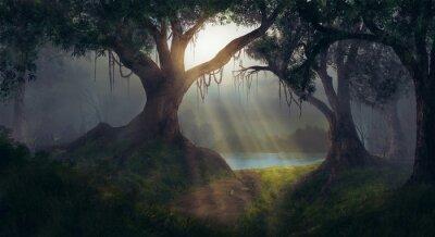Obraz Sun promienie w lesie