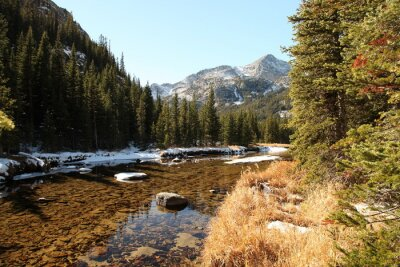 Obraz Sunny autumn day with a little snow along West Fork Rock Creek in Beartooth Mountains, Montana