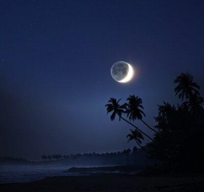 Obraz Światło księżyca