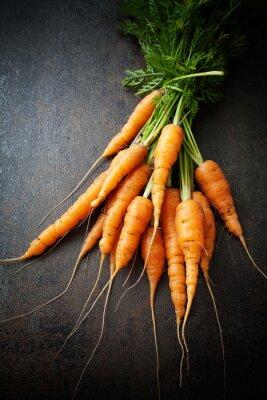 Obraz Świeże marchewki