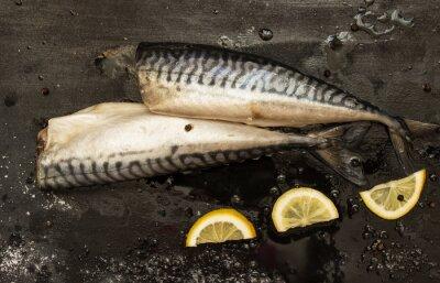 Obraz Świeże plastry cięte makrela cytryny, sól, pieprz na czarnym tle