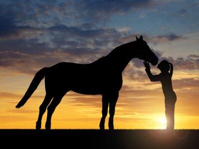 Obraz Sylwetka dziewczyny dając konia pocałunek w zachodzie słońca