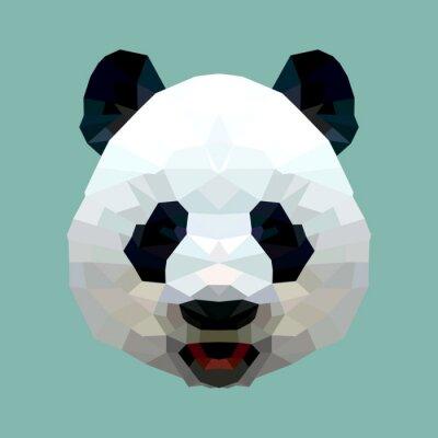 Obraz Szef panda wielokąta wyizolowanych wektorowe