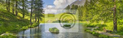 szeroki kąt panorama jeziora lasu we Włoszech