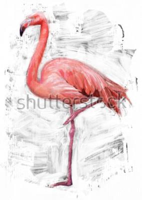 Obraz szkic ptak flamingo / malowanie farbą olejną