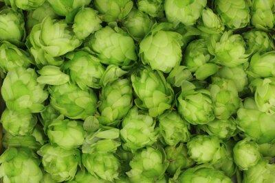 Obraz Szyszki chmielu zielony abstrakcyjne tło