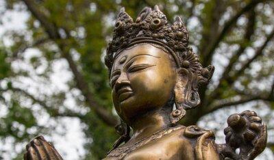 Obraz Tara-head, Nepal