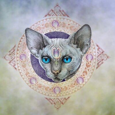 Obraz Tatuaż, koty głowę w okręgu
