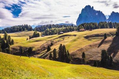 The landscape of the Alps di Siusi