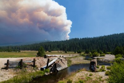 Obraz The plume from the Dixie Fire in Plumas County, California billowing smoke as seen from nearby Deer Creek on July 22, 2021