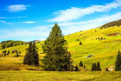 Thel landscape of the Alps di Siusi