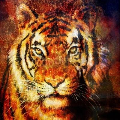 Obraz Tiger head, streszczenie kolor tła, komputer collage, kontakt wzrokowy