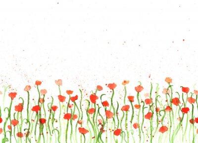 Obraz Tło z akwarela rysunek dłoni czerwone maki na białym tle. Seamless transparent z kwiatami. ręcznie malowana kopia przestrzeń kolorów granicy.