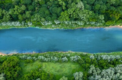 Obraz top view of summer green trees with a river