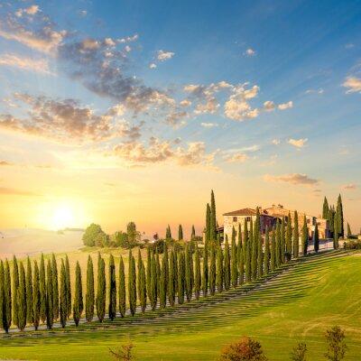 Obraz Toskania na zachodzie s? O? Ca - droga wiejska z drzewami i domem